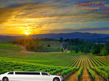 temecula-wine-tasting-tour